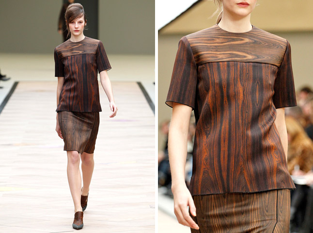Berti Blog: Celine Fall 2011